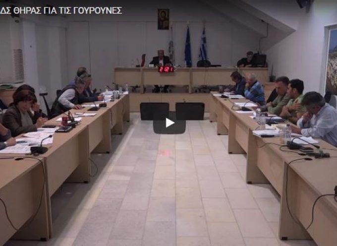 ΒΙΝΤΕΟ: Ομόφωνο ΝΑΙ του Δημοτικού Συμβουλίου στο ψήφισμα για τις «γουρούνες».
