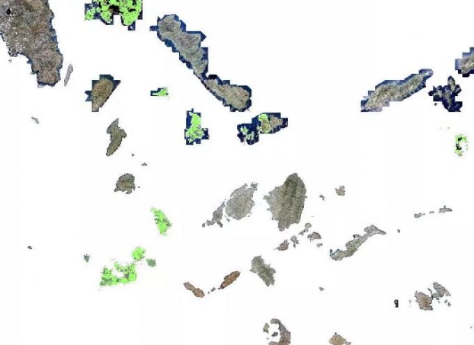 Συνάντηση στο ΥΠΕΝ για την επίλυση προβλημάτων που προκύπτουν κατά την ανάρτηση των δασικών χαρτών