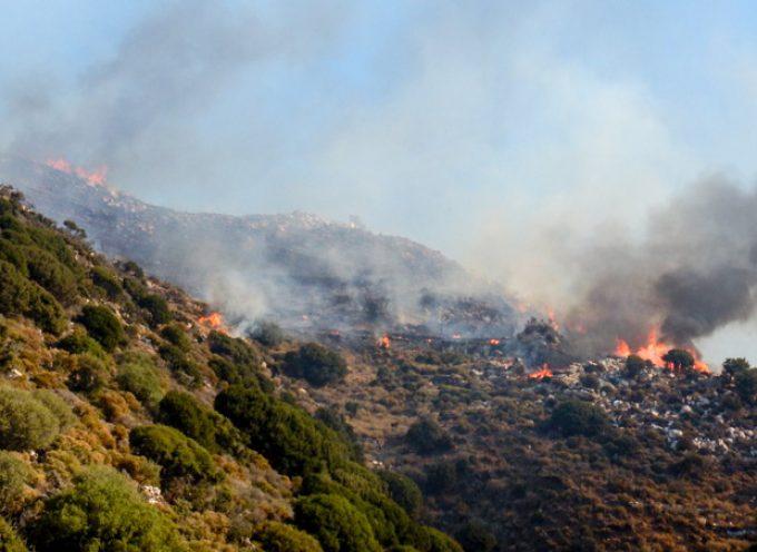 Πολύ υψηλός κίνδυνος πυρκαγιάς το Σάββατο 4-8-2018 στην Περιφέρεια Νοτίου Αιγαίου (Π.Ε. Κυκλάδων)»