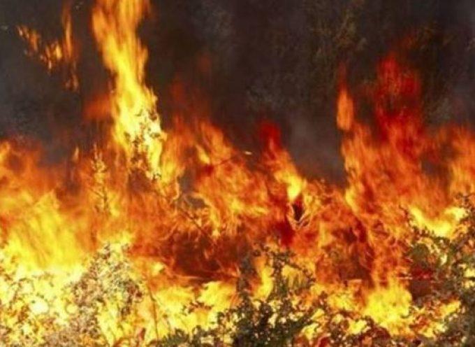 Αντιπυρική Περίοδος 2019 – Μέτρα πρόληψης – Αποφυγή επικίδυνων ενεργειών πρόκλησης πυρκαγιών- Μέτρα προστασίας
