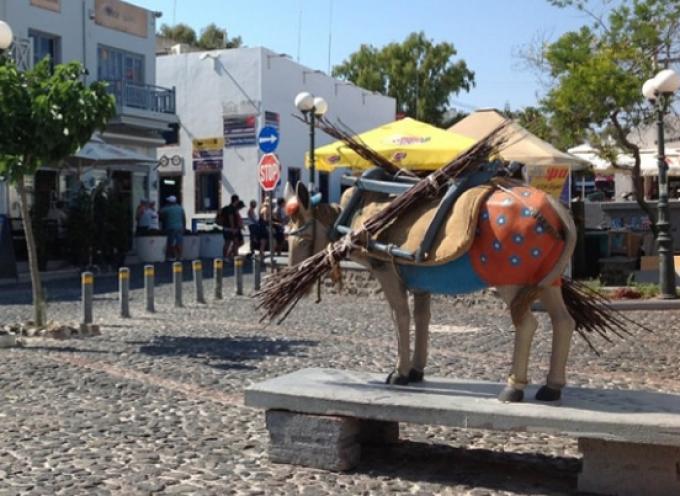 Οι ιδιοκτήτες αγοραίων επιβατηγών ιπποειδών της Σαντορίνης εργάζονται σκληρά για να βελτιώσουν τις συνθήκες για τα ζώα τους