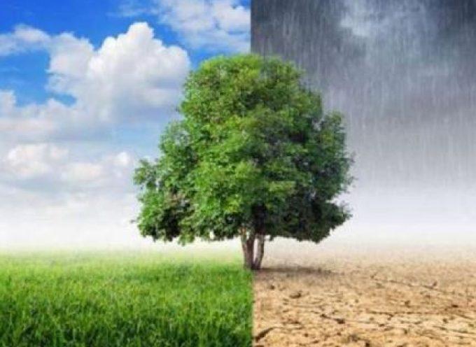 Εκπαιδευτικό πρόγραμμα «Μαθαίνω για το Περιβάλλον» από τον ΔΑΠΠΟΣ