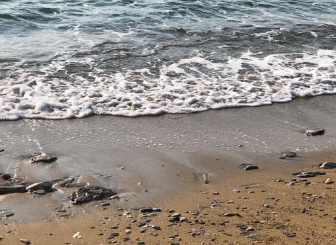 Δήμος Αμοργού: Εθελοντικός καθαρισμός στις παραλίες του νησιού