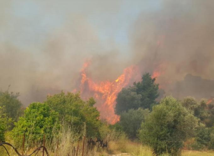 Αντιπυρική Περίοδος 2021 «Μέτρα πρόληψης – Αποφυγή επικίνδυνων ενεργειών πρόκλησης πυρκαγιών- Μέτρα προστασίας»