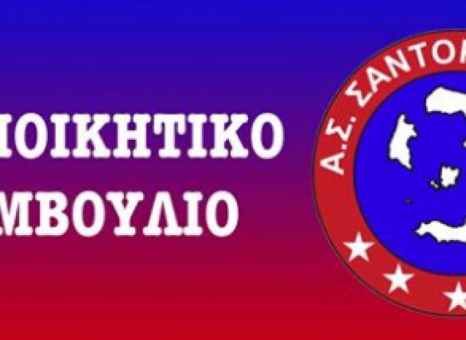 Το Διοικητικό Συμβούλιο της Α.Σ. Σαντορίνης 2020