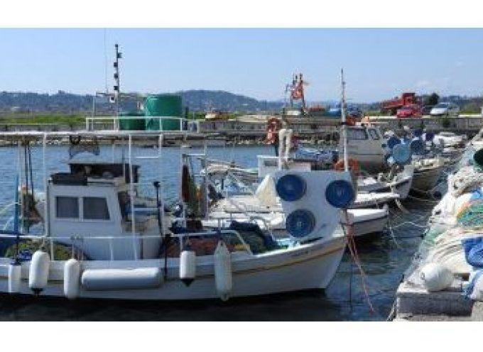 ΠΝΑΙ: Συνεχίζονται οι αποζημιώσεις, λόγω Covid-19, από το επιχειρησιακό πρόγραμμα αλιείας