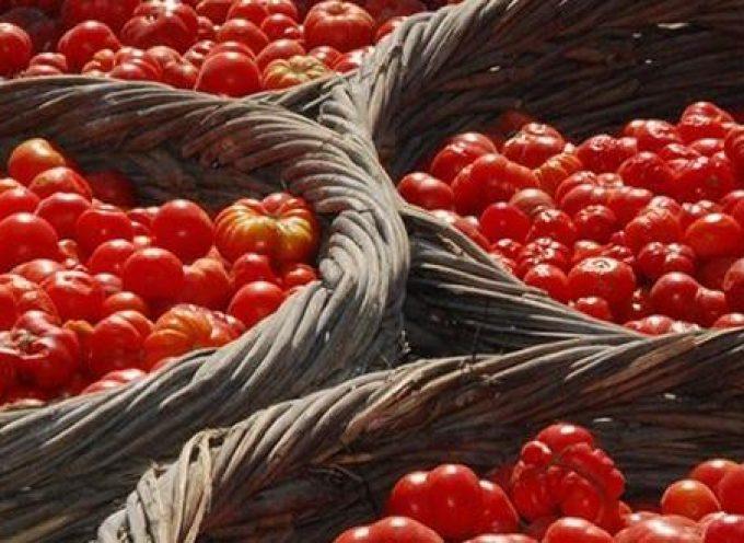 ΕΣΘΠ:Δήλωση Συγκομιδής για την παραγωγή σταφυλιών, αρακά και τοματάκι Σαντορίνης Π.Ο.Π. για το έτος 2021